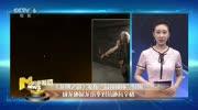 《龙牌之谜》巅峰对决预告:成龙  阿诺·施瓦辛格主演