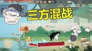 四川方言猫和老鼠:汤姆猫抓老鼠拿出神器,威力堪比98K!笑了