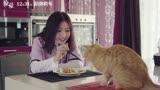 《寵愛》同名主題曲MV上線!鐘漢良陳偉霆吳磊郭麒麟等眾星獻唱
