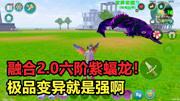 创造与魔法:欧皇融合2.0六阶紫蝠龙!极品的靛蓝变异就是强啊